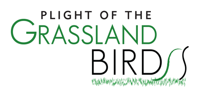 Plight of the Grassland Birds